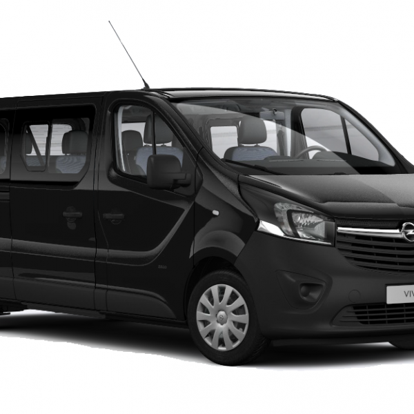 Servizio di noleggio con conducente - minivan Pet Friendly